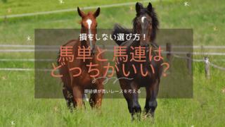 馬単と馬連はどっちがいい?選び方