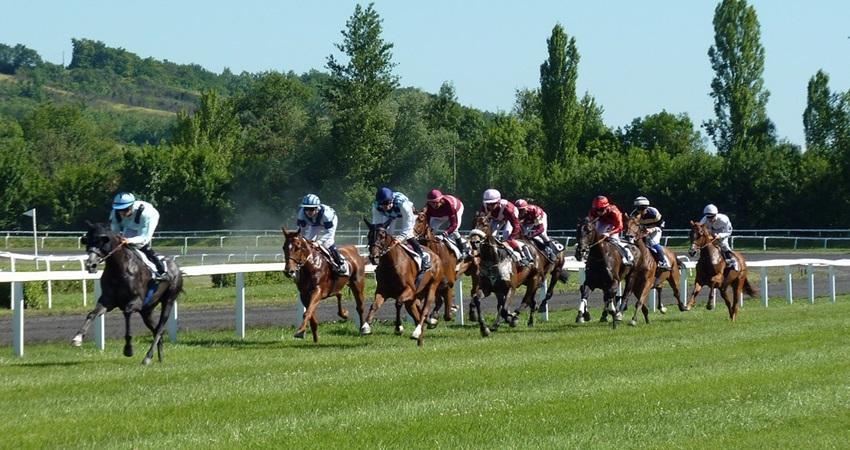 馬連の買い方 予想よりも買い方を重視