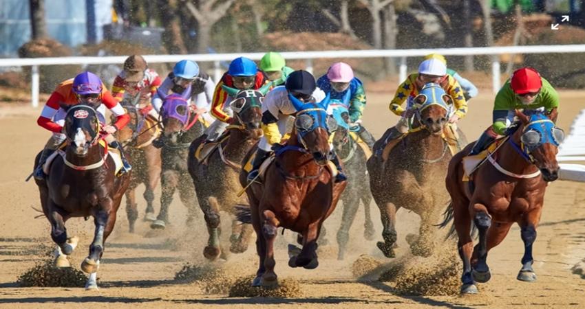 地方競馬 稼ぐための騎手買い